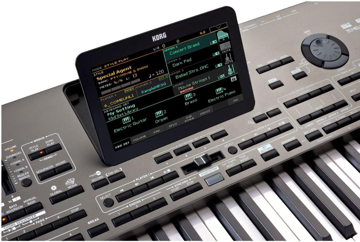PA4X76 Musikant
