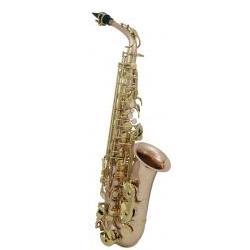 Alt-Saxophon AS-202G GEWApure