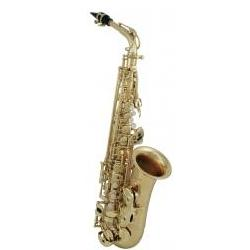 Eb-Saxophon AS-302 Pro-Series GEWApure