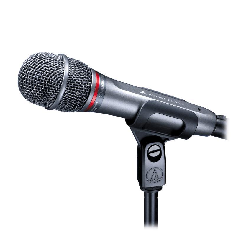 AE-4100 Dynamisches Mikrofon Nierencharakteristik