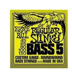 EB2836 Bass 5 Saiten Ernie Ball