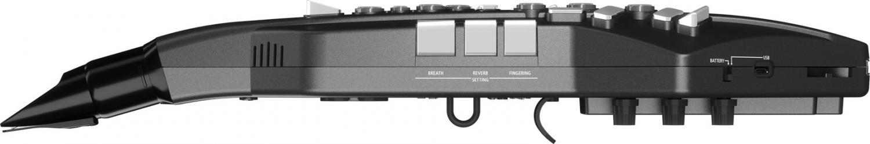 AE-05 GO Aerophone