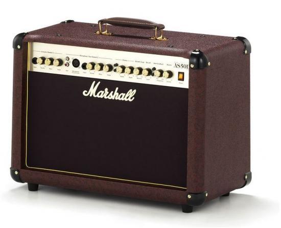AS50D Akustik-Gitarren-Combo