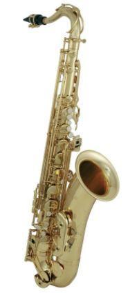TS-202 Tenor-Saxophon Student