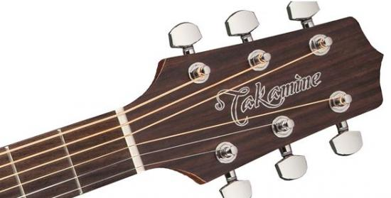GD20NS Natural E-Akustikgitarre