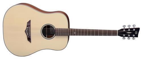 RT10 Root Dreadnought Gitarre