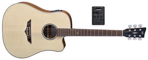 RT10CE Root E-Akustikgitarre