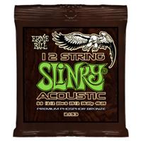 2153 Slinky-Acoustic 12-String Ernie Ball