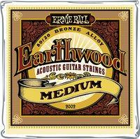 EB2002 Earthwood Bronze Medium Ernie Ball