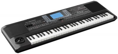 Portable Keyboard microArranger